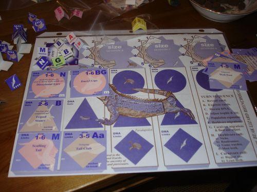 Board Game: American Megafauna