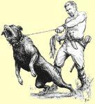 RPG Item: Dogs
