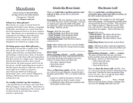 RPG Item: Microfronts