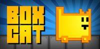 Video Game: Box Cat