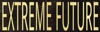 RPG: Extreme Future