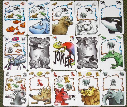 Board Game: Frank's Zoo