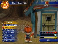 Video Game: Monster Rancher 4