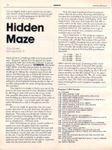 Video Game: Hidden Maze