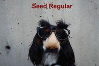 RPG: Seed Regular