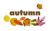 Board Game: Autumn