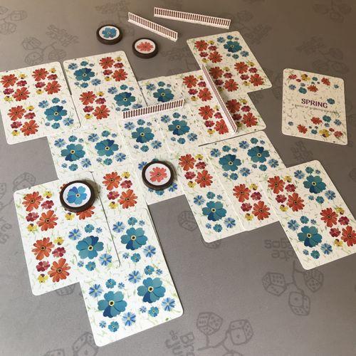 Board Game: Spring