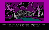 Video Game: The Hobbit (1982)