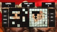 Video Game: Fitzzle Cute Kittens