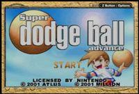 Video Game: Super Dodge Ball Advance