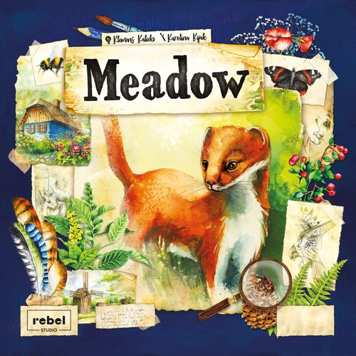 Board Game: Meadow
