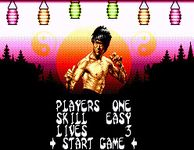 Video Game: Dragon: The Bruce Lee Story (Sega Platforms)