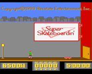 Video Game: Super Skateboardin'