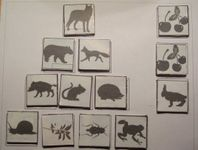 Board Game: Who eats whom: The food chain boardgame