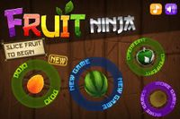 Video Game: Fruit Ninja