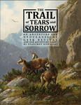 RPG Item: The Trail of Stone and Sorrow