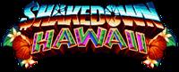 Video Game: Shakedown Hawaii