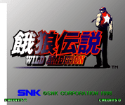 Video Game: Fatal Fury: Wild Ambition