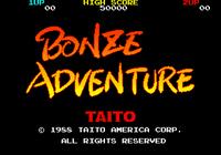 Video Game: Bonze Adventure