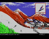 Video Game: Winter Games