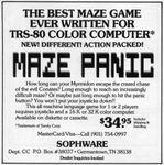 Video Game: Maze Panic