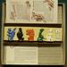 Board Game: Wir 5