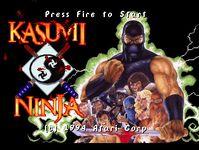Video Game: Kasumi Ninja