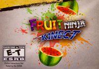 Video Game: Fruit Ninja Kinect