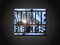 Video Game: Marine Fighters