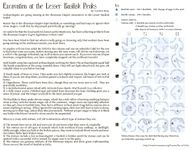RPG Item: Excavation at the Lesser Basilisk Peaks