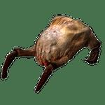 Character: Headcrab