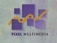 Video Game Developer: Pixel Multimedia