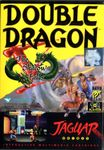 Video Game: Double Dragon V: The Shadow Falls