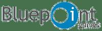 Video Game Developer: Bluepoint Games