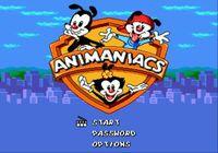 Video Game: Animaniacs