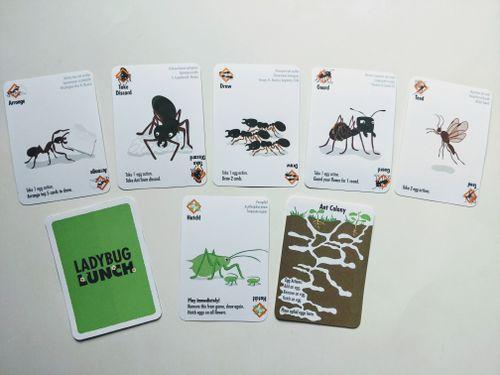 Board Game: Ladybug Lunch: Ant Antics