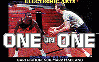 Video Game: Jordan vs. Bird: One-on-One