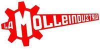 Video Game Developer: La Molleindustria