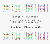 Video Game: Dungeon Adventure