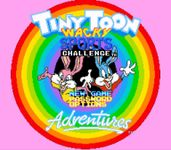 Video Game: Tiny Toon Adventures: Wacky Sports Challenge