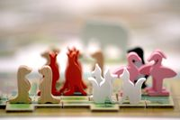Board Game: New York Zoo
