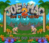 Video Game: Joe and Mac 2: Lost in the Tropics
