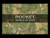 Video Game: Pocket World At War