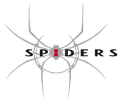 Video Game Developer: Spiders