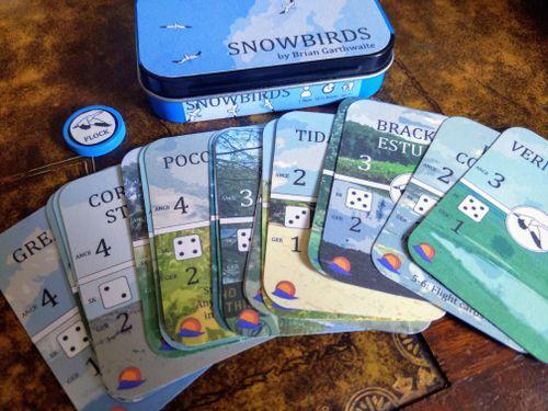Board Game: Snowbirds: Sunset Sky