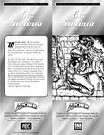 RPG Item: The Shroud
