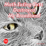 Board Game: Moth Eating Catz Destroyed My Broadband