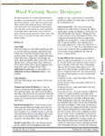 RPG Item: Bard Variant: Sonic Destroyer
