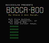 Video Game: Bugaboo (The Flea)