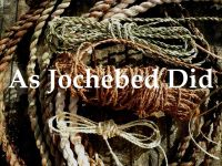 RPG: As Jochebed Did